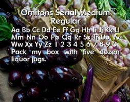 Ornitons Serial Medium Regular font